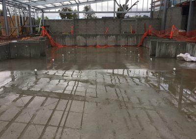 pool-reno